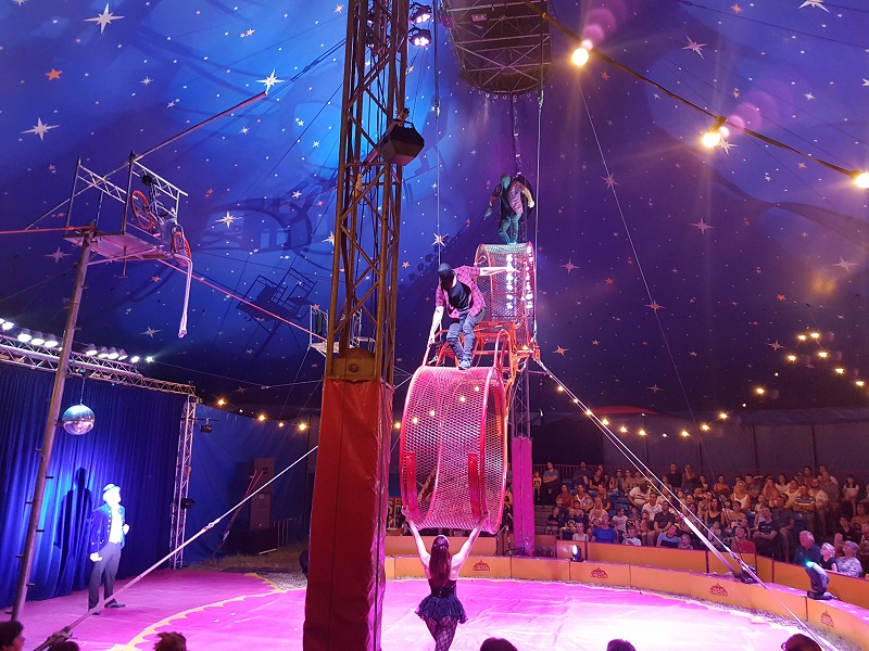 Los Sanchez at Paulos Circus