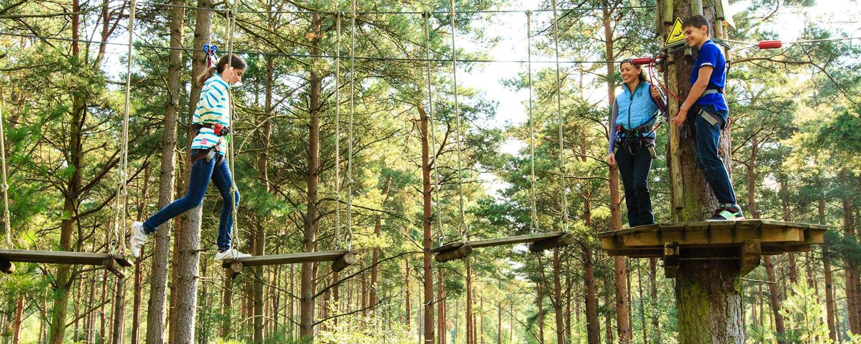 Go Ape! at Haldon Forest Park
