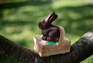 Exetercation: Cracking Easter Activities and Crafts