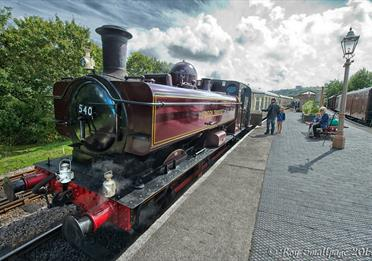 South Devon Railway train