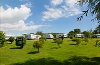 Castle Brake Holiday Park campervans in a field