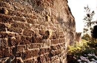 Close up of the Exeter Wall