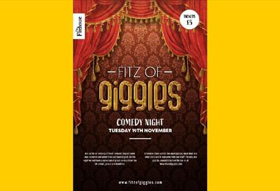 Fitz of Giggles comedy night