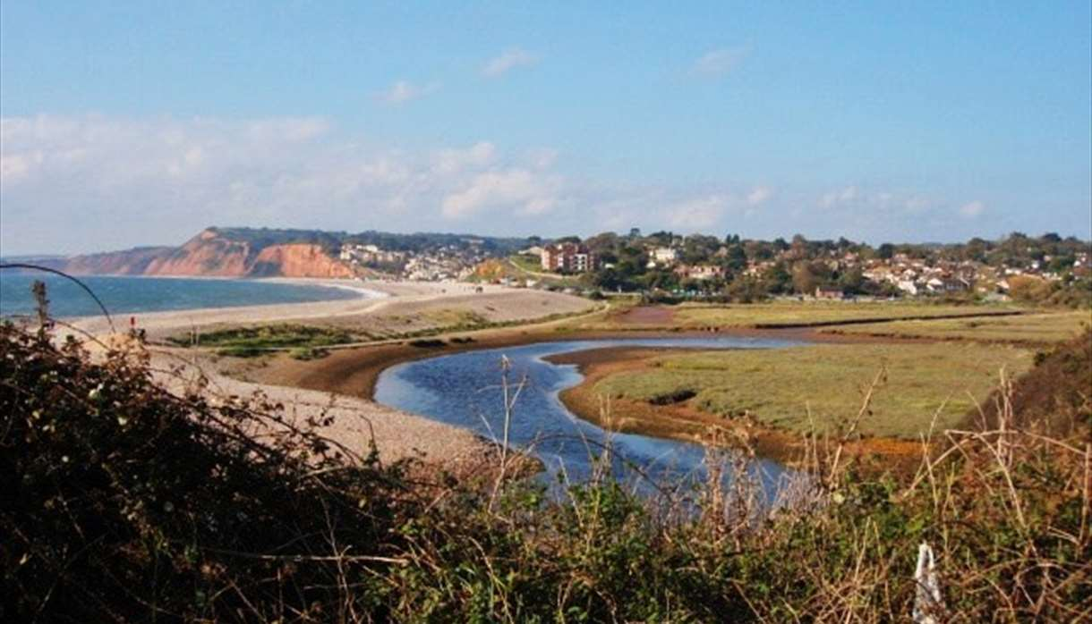 Budleigh Salterton from River Otter