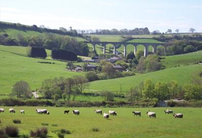 Cannington Viaduct Uplyme