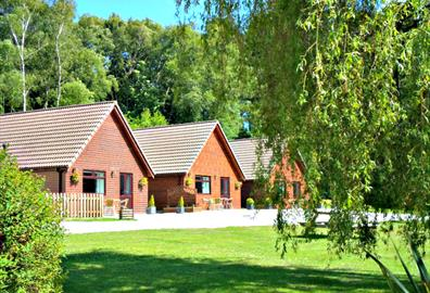 Premier | 4 person and delightful grounds at Alpine Park Cottages