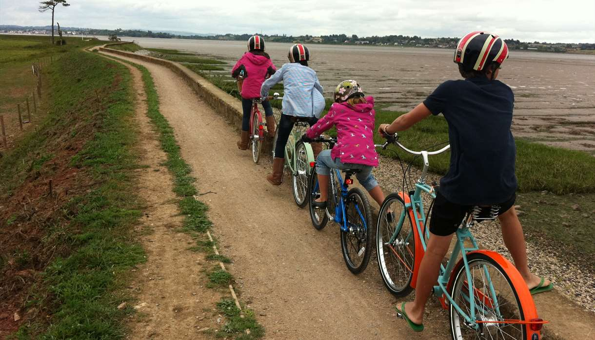 Darts Farm Cycle Hire