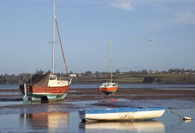 the exe estuary