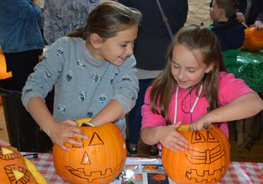 Children enjoy carving pumpkins during Halloween half term at The Donkey Sanctuary