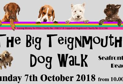 The Big Teignmouth Dog Walk